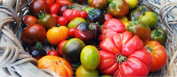 Photo tomates